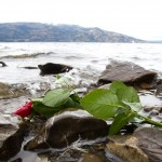 Rose i vannkanten på Utøya